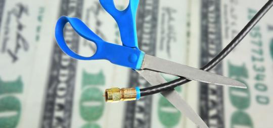 Scissors cutting computer wire