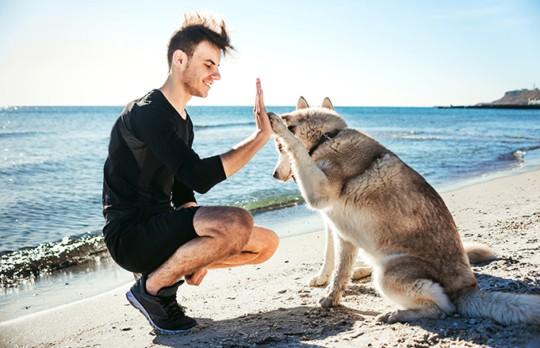 man at beach with big dog