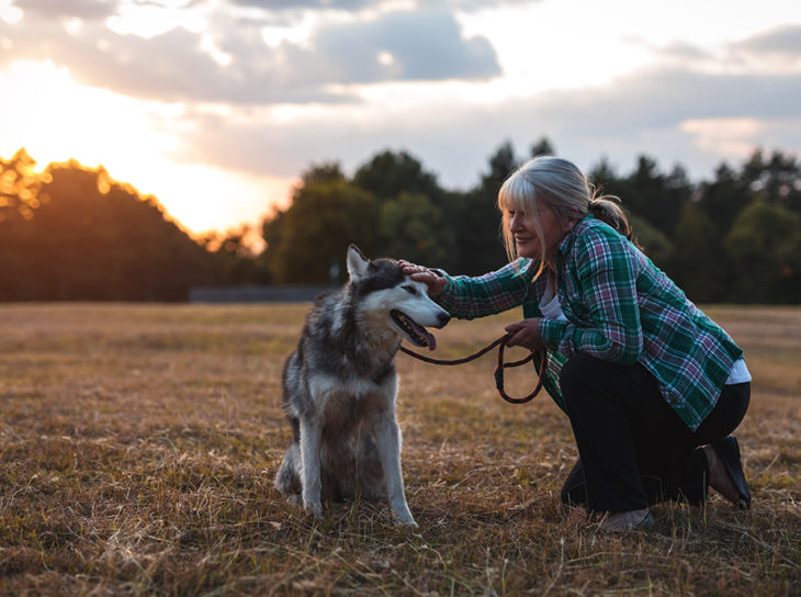 woman playing with dog at sunset